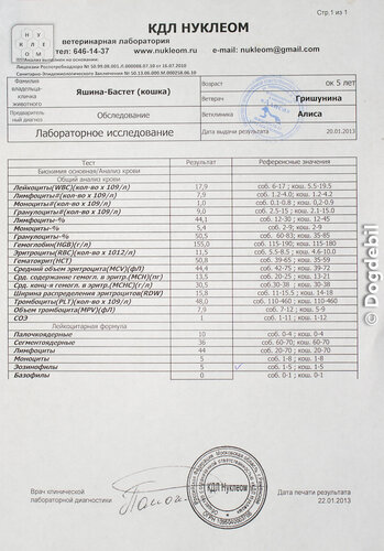 http://img-fotki.yandex.ru/get/4132/62787160.3a/0_75aac_6b6c09a5_L.jpg