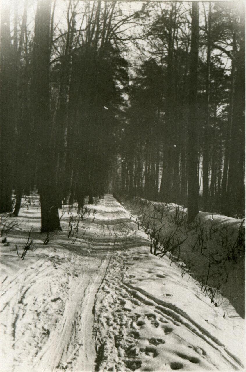 1940 г. Зима, парк