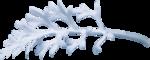 растения в снегу (6).png