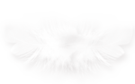 CharlieNco_Sweet Valentine_Feather 2.png