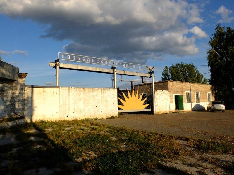 Кротовка,Подбельск, экран в отрадном 575.JPG