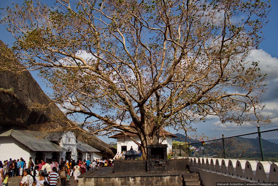 Шри-Ланка_Пещерный храм_11