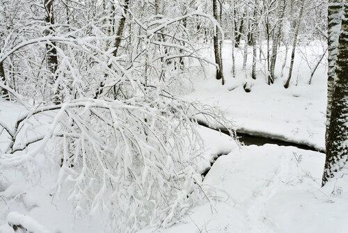 Правый приток р. Серебрянки в месте впадения