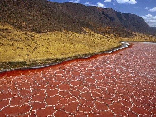 Озеро Натрон, Африка