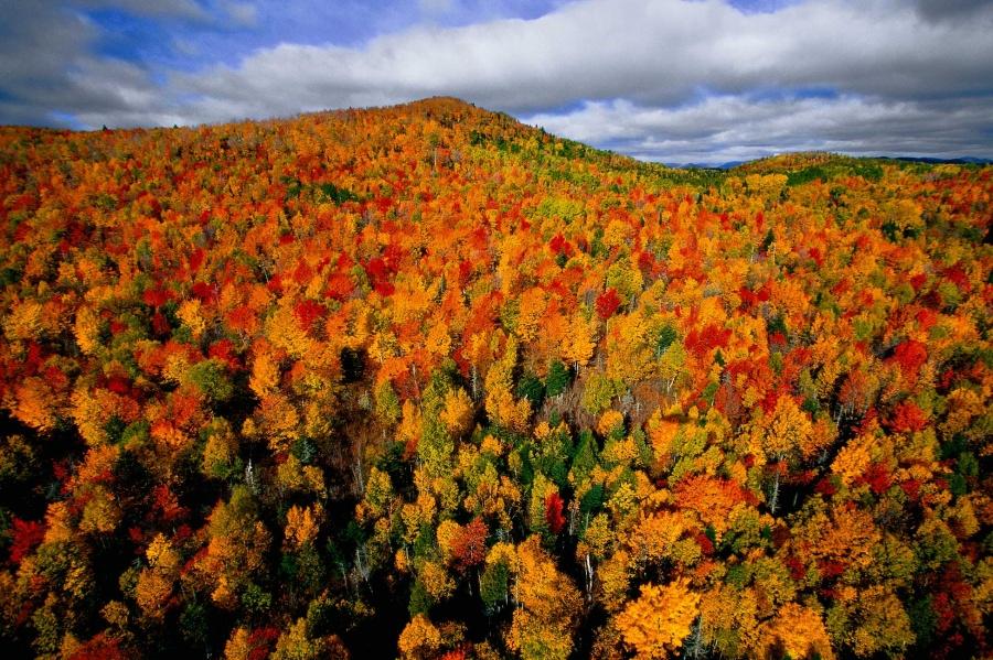 ©Yann Arthus Bertrand С мотрите также: 20мест, где осень невероятно прекрасна Такая разная осень