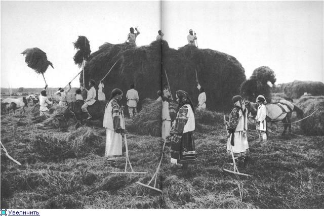 Сенокос в южнорусской деревне. Фотография начала XX века.Девушки в праздничных покосных подпоясанных рубахах, женщина в праздничном костюме.