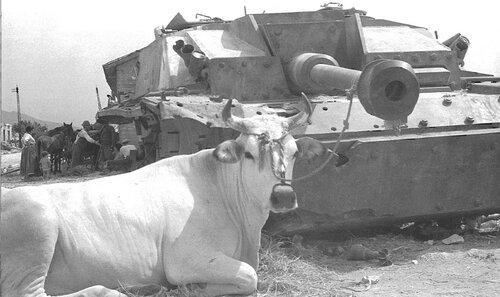 Подбитая немецкая военная техника. Часть 2. 18+