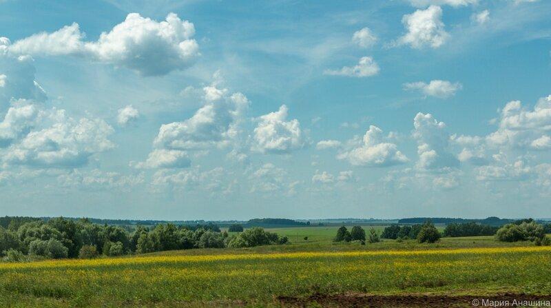 Поля, Рязанская область
