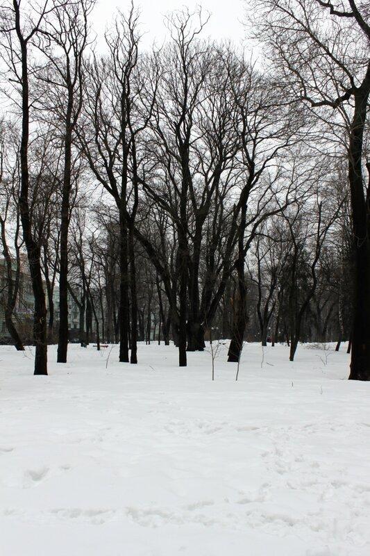 Мариинский парк в конце марта