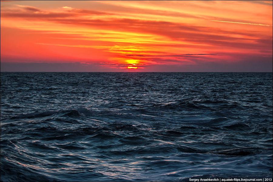 Январское черное море