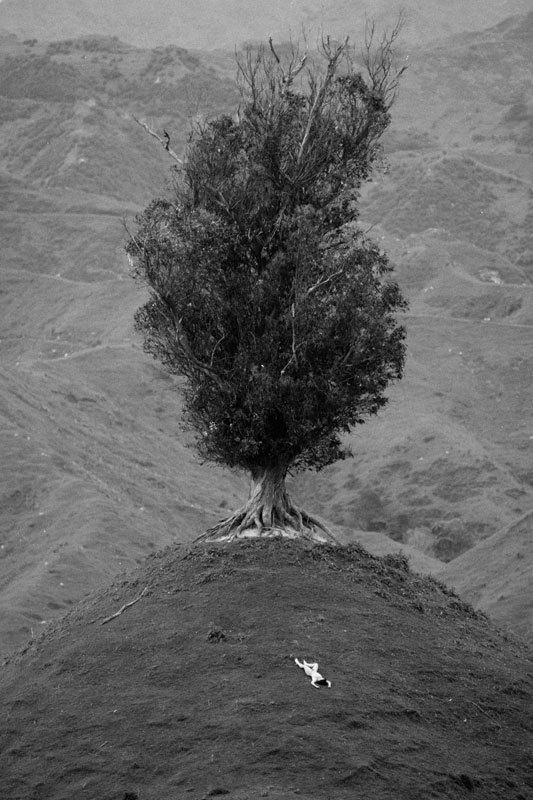 Эротика в пейзаже / Nudes in Landscape by John Crawford
