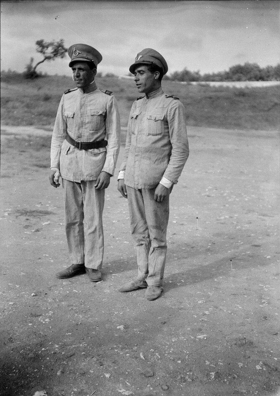 Правительственные солдаты