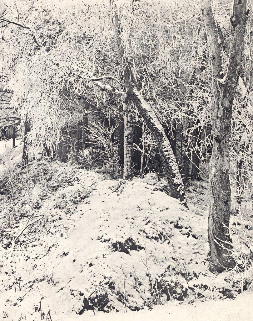 Зимний пейзаж 1891
