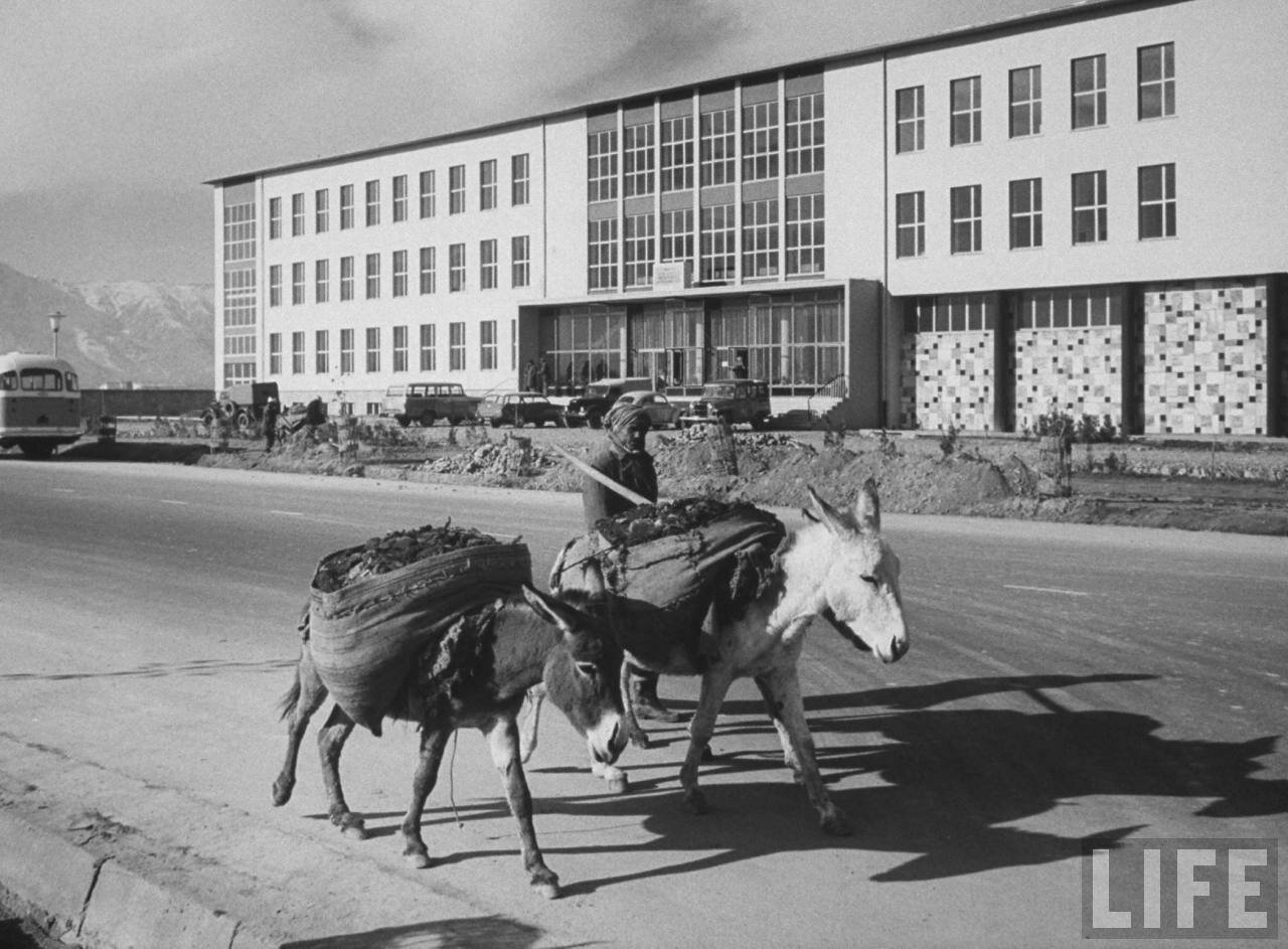 Институт общественного здравоохранения в Кабуле