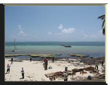 Кения. Момбаса. Voyager Beach Resort.