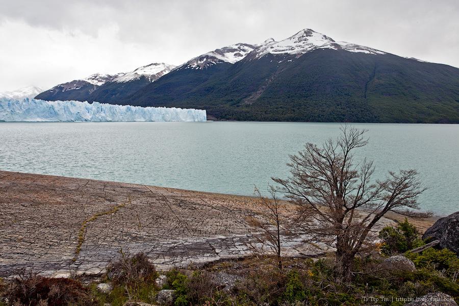 17. Устоявший перед потеплением. Ледник Перито Морено.