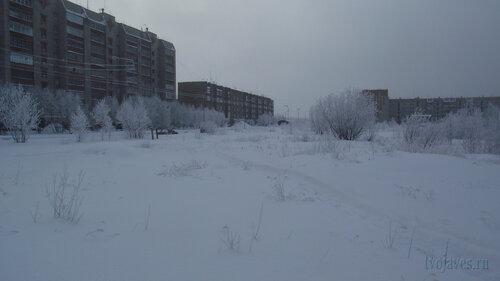 Фото города Инта №3569  Мира 59, 69, 66 и Морозова 16 10.02.2013_12:27