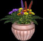 Flower-Pot-5-Belles-Graphics.png