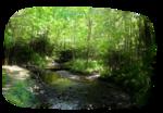 Graphics landscape, nature, city 0_a2635_34ca29cf_S