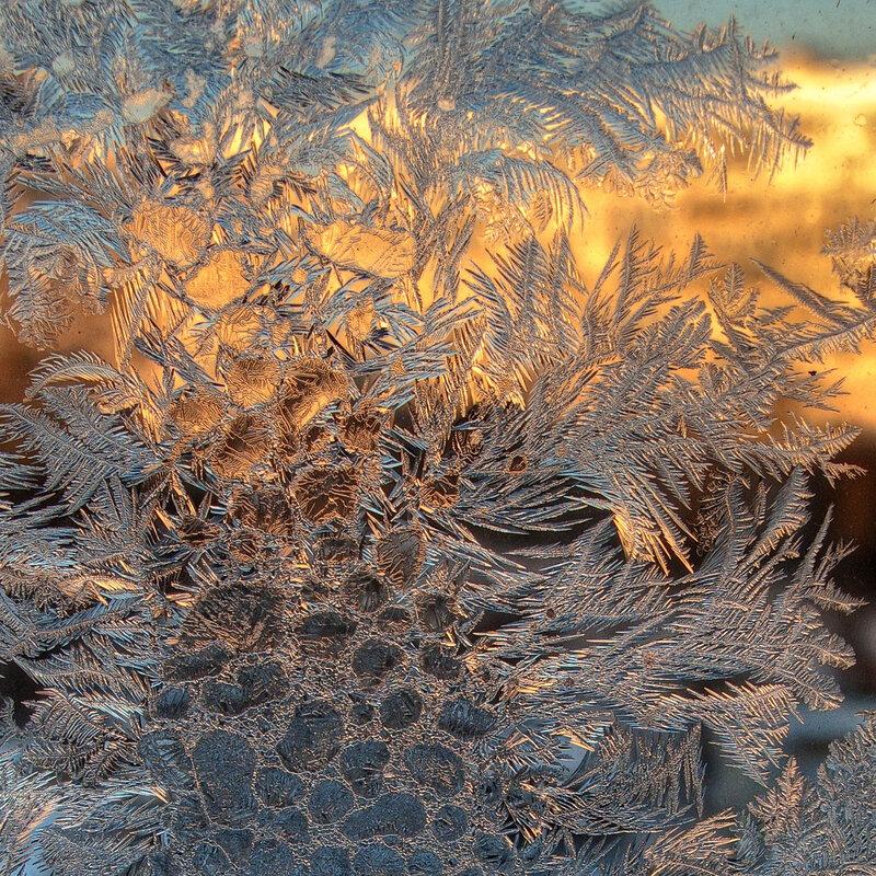 Плетёт зима узоры