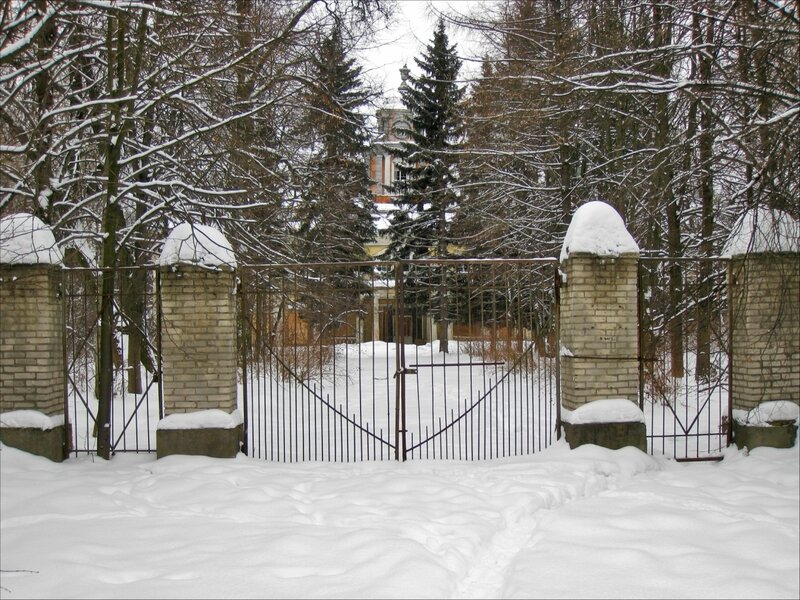 Виноградово, ворота усадьбы и дом Германа