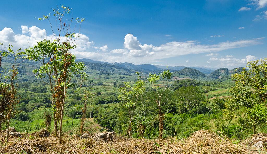 Горы в штате Сьерра Мадре де Чьяпас. Отзыв о самостоятельном туре в Мексику. Поездка в Сан-Кристобаль-де-лас-Касас