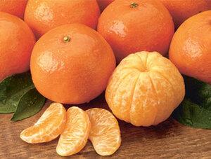 Более 24 тонн мандаринов в Приморье задержаны Россельхознадзором