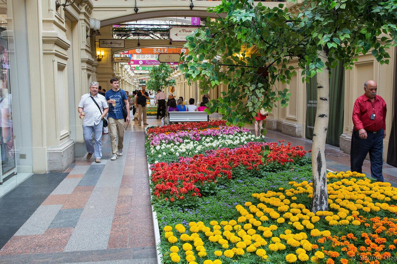 цветы-3.jpg