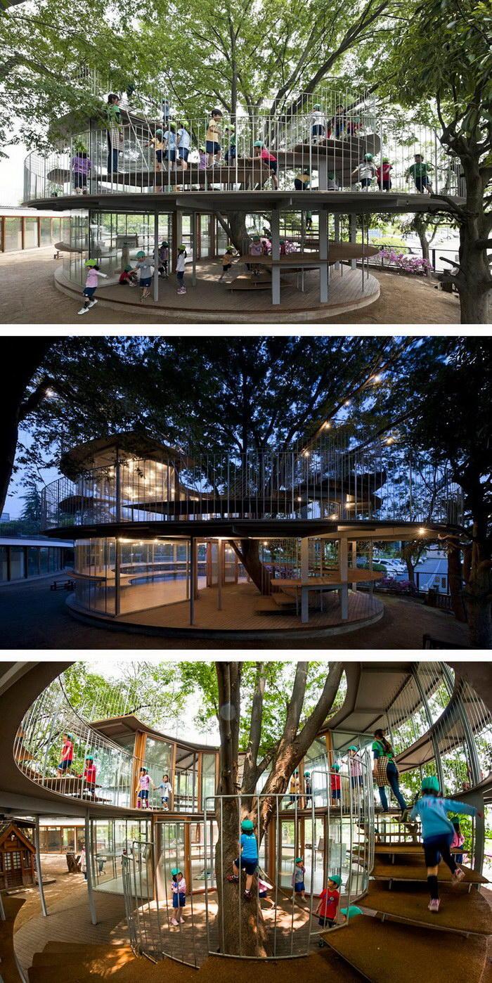 1. Площадка детского сада, образованная вокруг дерева