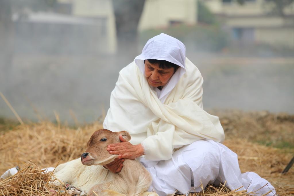 Вы учитесь состраданию Когда вы много путешествуете, сталкиваясь с множеством культурных особенносте