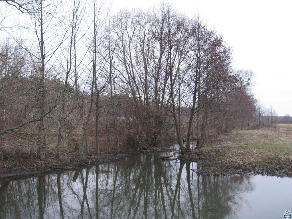 Река Люджа