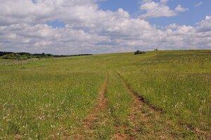 Утренний летний пейзаж: колея дороги идущей на холм, зелень и облака