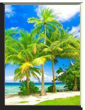 Сейшелы. Seychelles. Фото Vibrant Image Studio - shutterstock