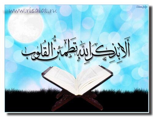 новости ислама знакомства никах