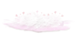 CharlieNco_Sweet Valentine_Feather floor shadow.png