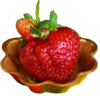 http://img-fotki.yandex.ru/get/4135/136487634.a78/0_da4f3_37e88f8_XS.png