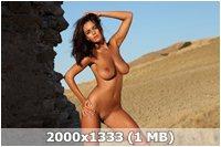 http://img-fotki.yandex.ru/get/4135/169790680.13/0_9d9bd_9323d54d_orig.jpg