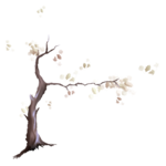 martad_WhiteForest_el(4).png