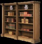 bookshelves09.png