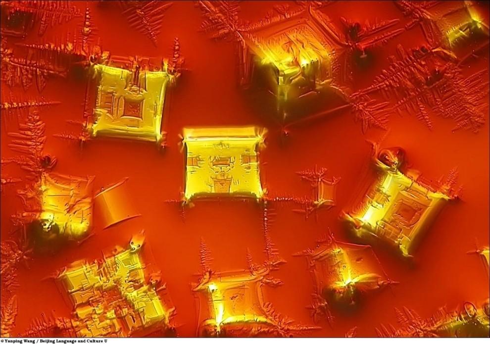 9. Кристаллы традиционного соевого китайского соуса под микроскопом