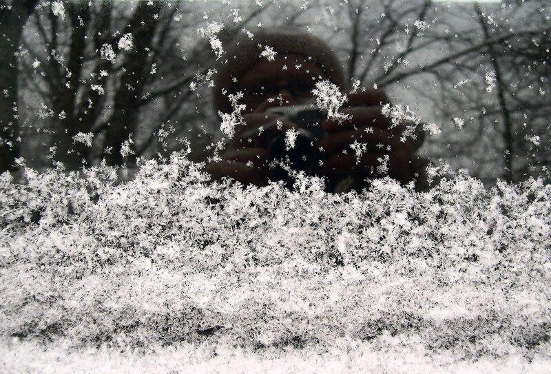 падали снежинки.JPG