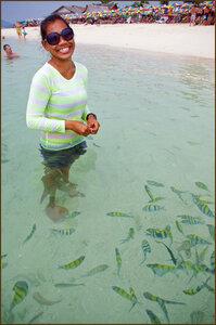 Среди рыбок
