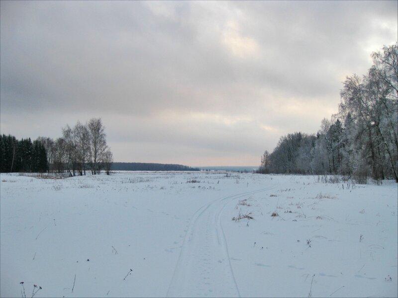 Протасовские поля