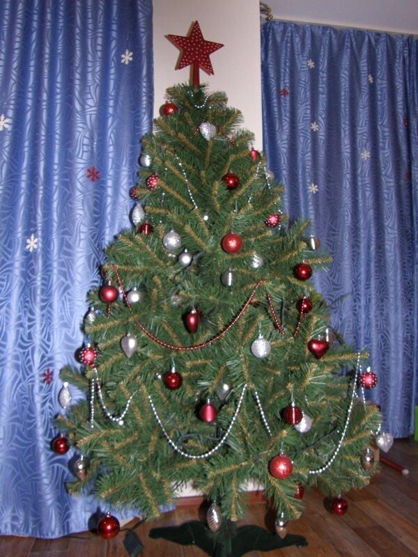 Главная елка страны