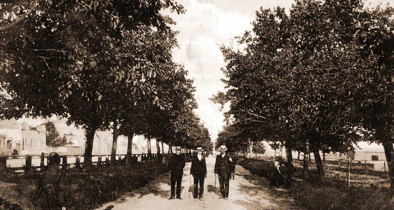 Прогулка по Николаевскому бульвару