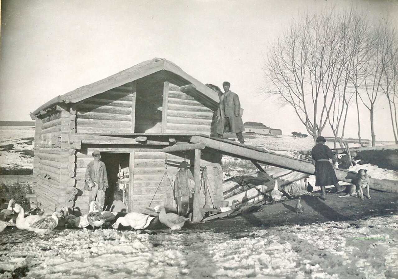 Наружный вид поставной мельницы с земляной крышей.Пржевальск 1904