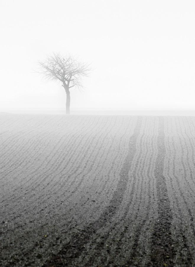 Фотограф Philipp Klinger