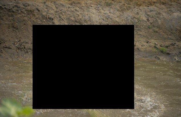 Две мокрые киски в грязи