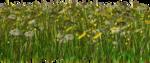 Lug_Grass_Flower (2).png