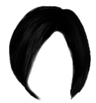 hair_PNG5606.png